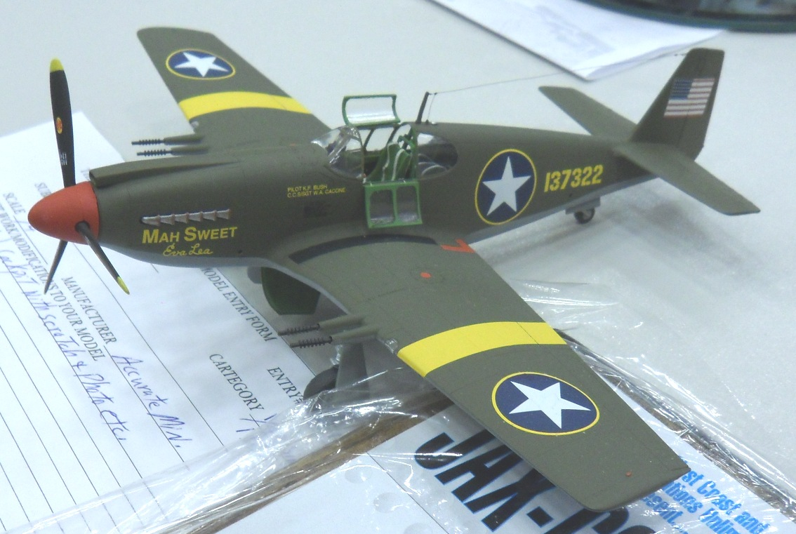 Accurate Miniatures 1/48 P-51 Mustang